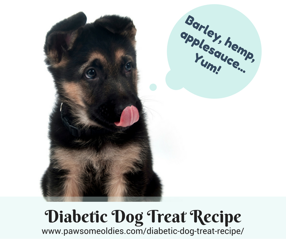 Diabetic Dog Treat Recipe