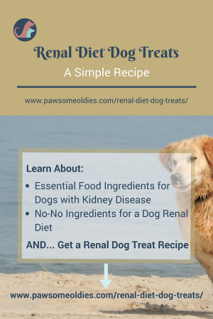 Renal diet dog treats ingredients safe for dogs with kidney disease good ingredients for renal diet dog treats forumfinder Gallery