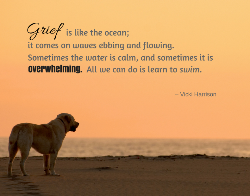 Pet Loss Quotes To Help You Through Grief Of Losing Your Dog