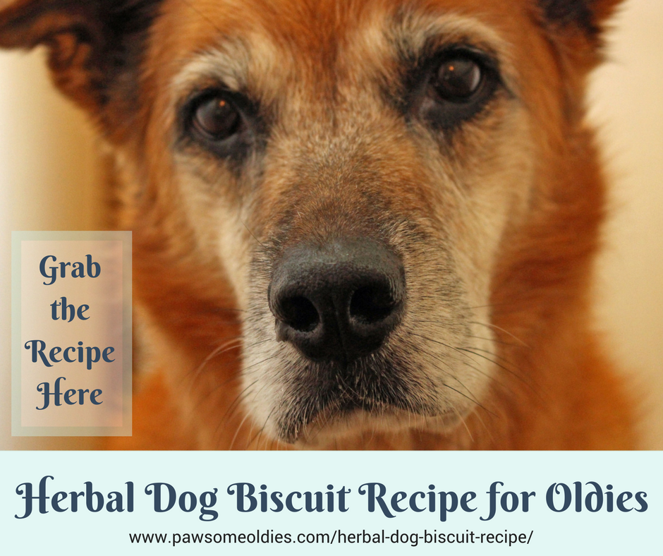 Herbal Dog Biscuit Recipe