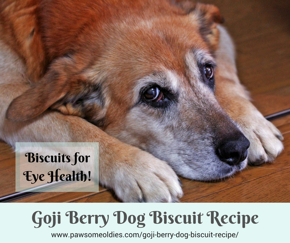 Goji Berry Dog Biscuit Recipe