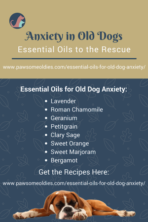 Essential Oils For Old Dog Anxiety A Dog Owner S Guide With Oil