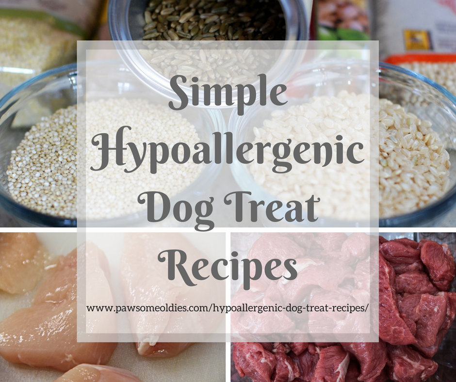Hypoallergenic Dog Treat Recipes